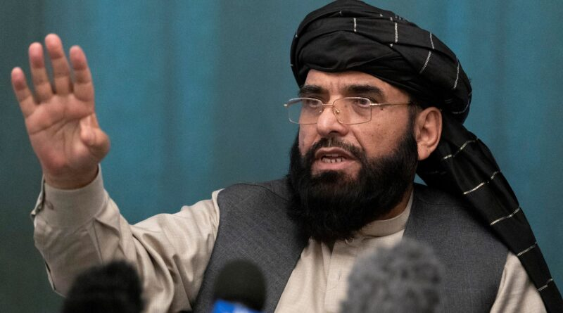 Taliban Suhail Shaheen